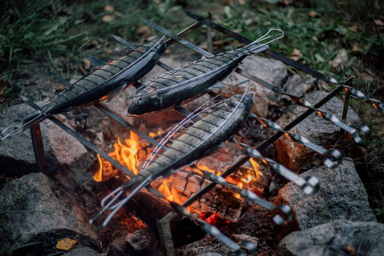 Best Camping Grill Reviews